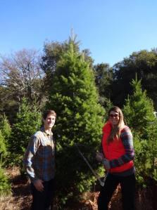 Selecting tree